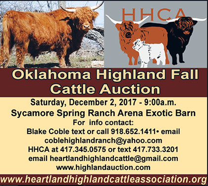 HHCA Fall Highland Cattle Auction